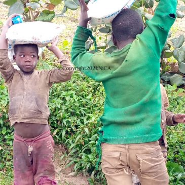 Providing the Batwa Groups at Lake Bunyonyi Emergency Food under Heart Breaking  Circumstances.